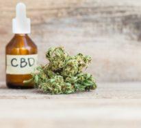 Die CBD Wirkung – Tipps bei Anwendung, Dosierung und Kauf