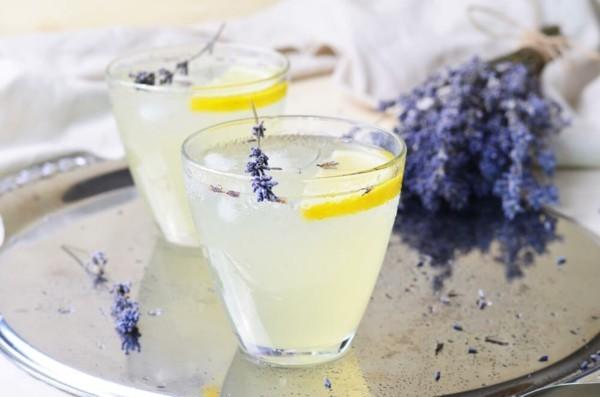 durstlöscher limonade mit lavendel