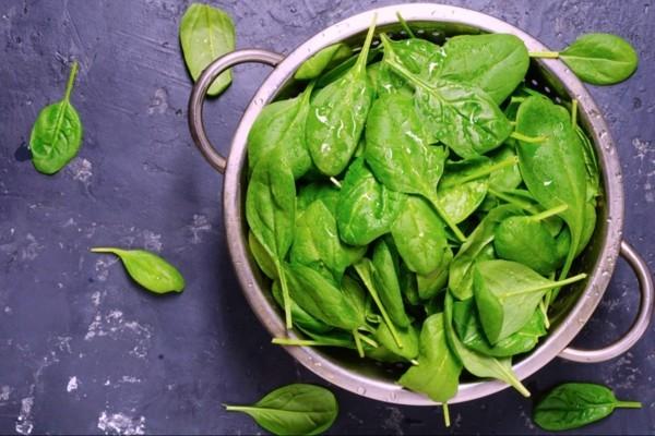 eisenhaltige lebensmittel spinat