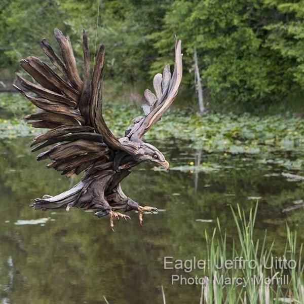 fliegender vogel - tolle umwelt