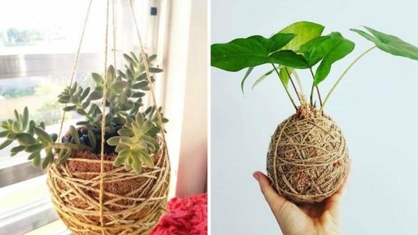 japanische Gartenkunst Bonsai DIY Kokedama