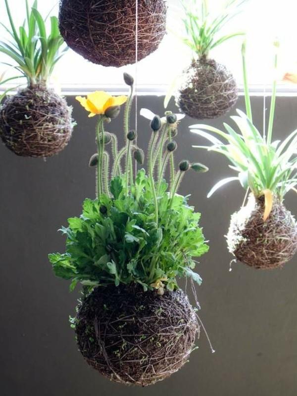 japanische Gartenkunst Ideen Mooskugel Kokedama selber machen