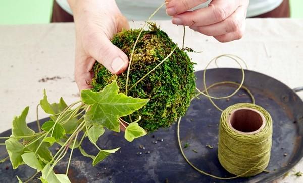 japanische Gartenkunst Kokedama Moosball mit Garn umwickeln
