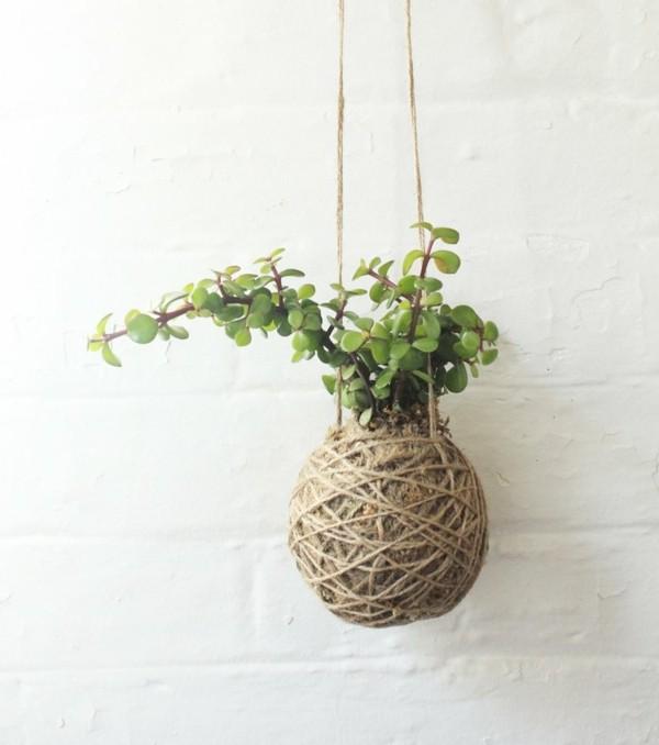 japanische Gartenkunst hängende Mooskugel DIY Kokedama