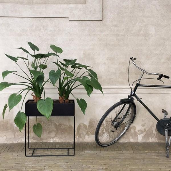 moderner pflanzr für die inneneinrichtung