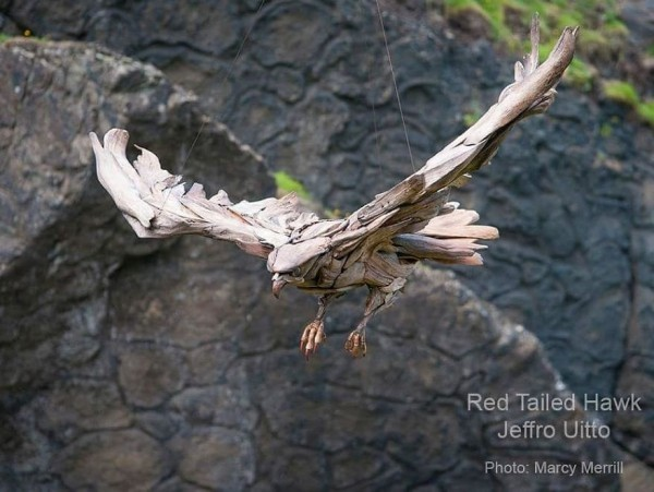 realistischer vogel - umwelt modern art idee