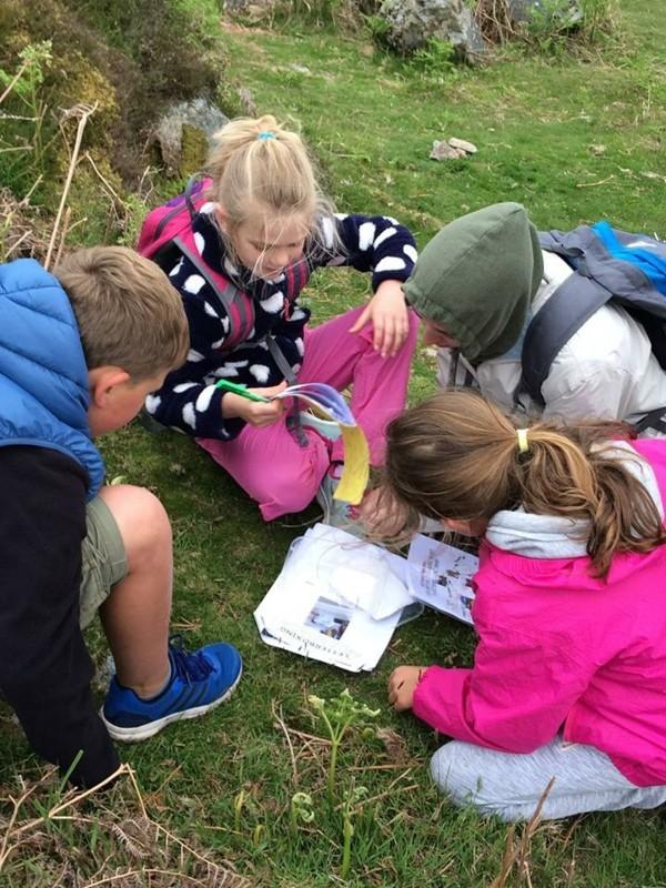 schatzsuche kindergeburtstag teamarbeit ideen