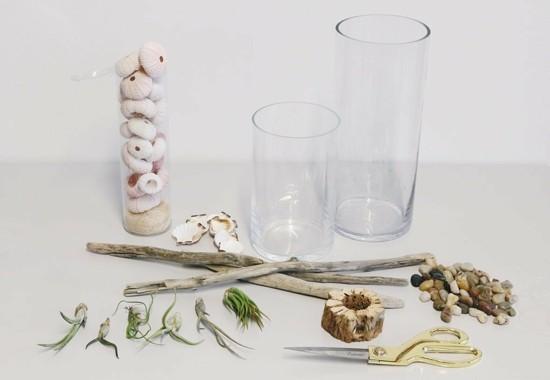 tillandsien deko im glas gestalten