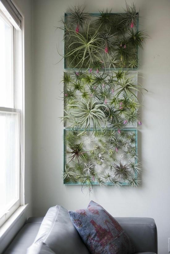 vertikale garten wandbegrünung tillandsien