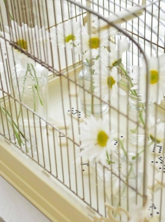 vogelkäfig deko mit domino und margeriten