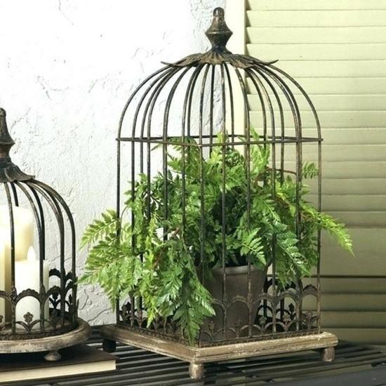 vogelkäfig deko mit grüne pflanzen farn