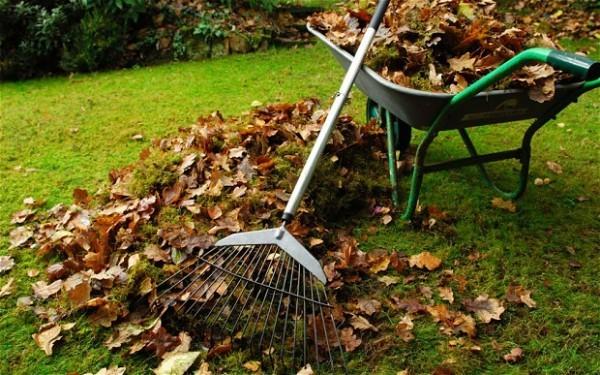 Garten im Herbst Was jetzt zu tun ist laub aufsammeln und kompostieren