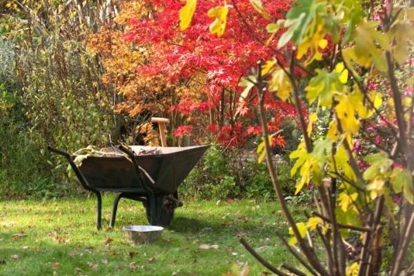 Garten im Herbst Was jetzt zu tun ist schubkarre im herbstgarten