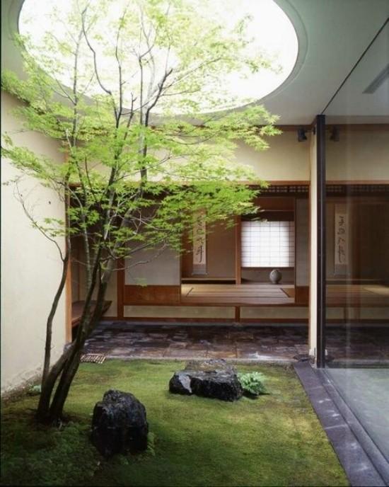 Japanischer Garten im Hinterhof hohe Ästhetik visuelle Harmonie Steine Moos Baum Glaswand