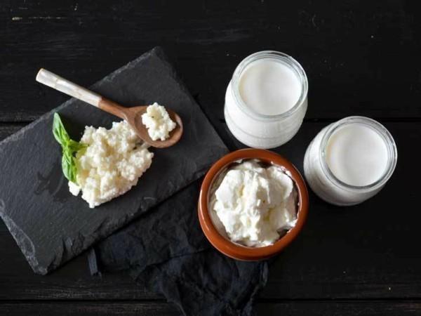 Kefir gesund Milchgetränk Milchkefir probiotische Lebensmittel Kefirknollen