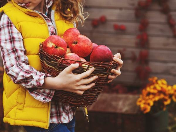 So kommen Sie gesund durch den Herbst Äpfel Obst und Gemüse
