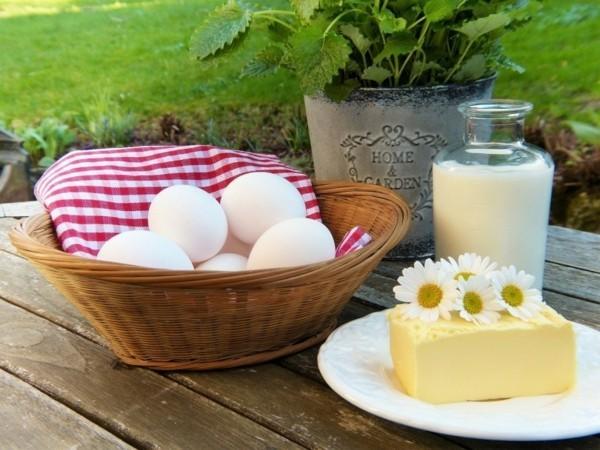 folsäure wirkung eier käse joghurt