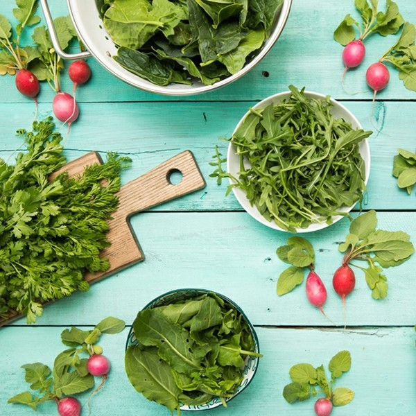 folsäure wirkung grünes blattgemüse