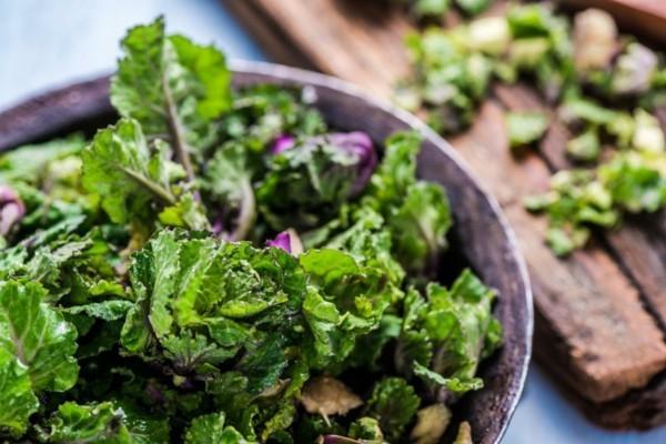 grünkohl folsäure wirkung
