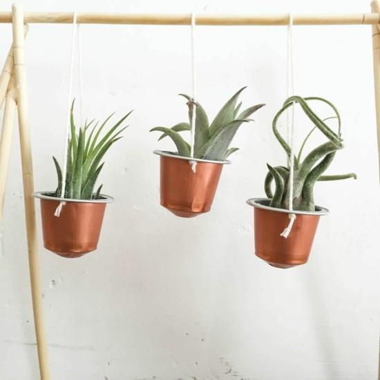 hängende blumendeko luftpflanzen basteln mit kaffeekapseln