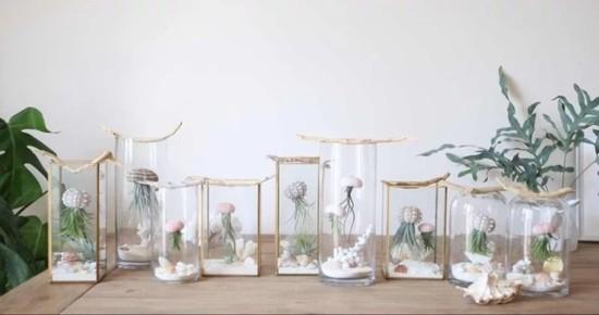 seeigel oktopuse basteln mit luftpflanzen
