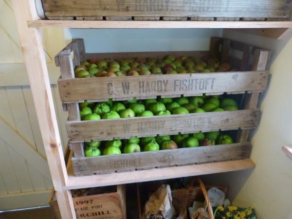 Apfel Äpfel gesund - grüne Ideen