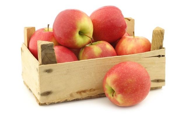 Apfel Äpfel gesund rot und gelb