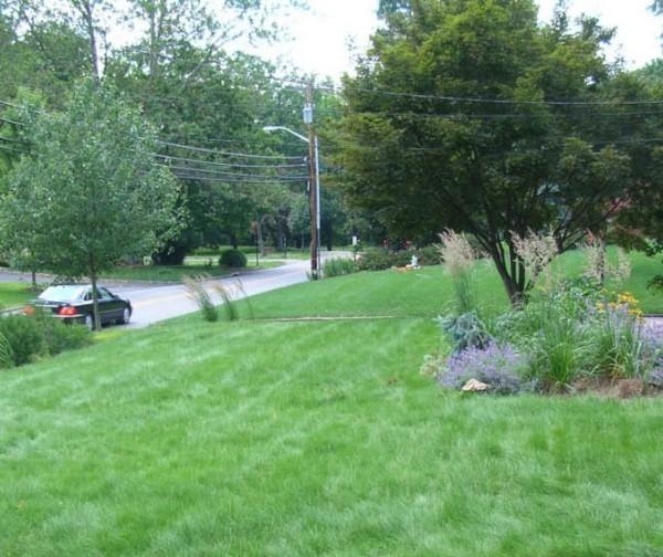 Gartengestaltung tipps vorhof in einer kleinen stadt