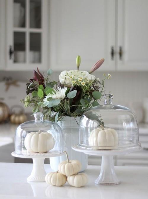 Herbstdeko in der Küche weiße Kürbisse unter Glasdeckel trendy und schön in dekorativer Hinsicht