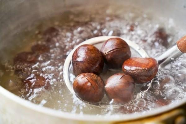 Maronen Zubereitung Maronen gesund Kastanien kochen