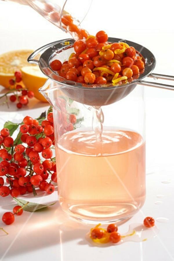 eberesche rezepte essig mit orangen