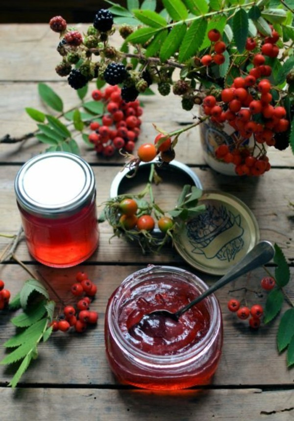 eberesche vogelbeere rezepte marmelade