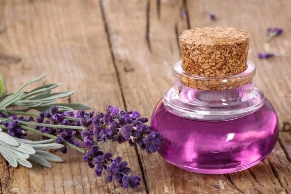 gesund leben lavendel perfum und heilmittel