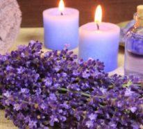 Gesund mit Lavendel und Lavendelöl im Herbst und das ganze Jahr über
