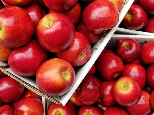 glanzvolle Apfel Äpfel sind gesund