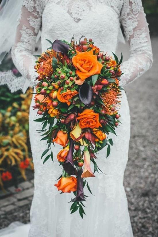 orangefarbene rosen protea
