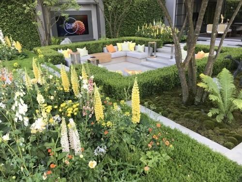 schöne pflanzen - gartengestaltung ideen