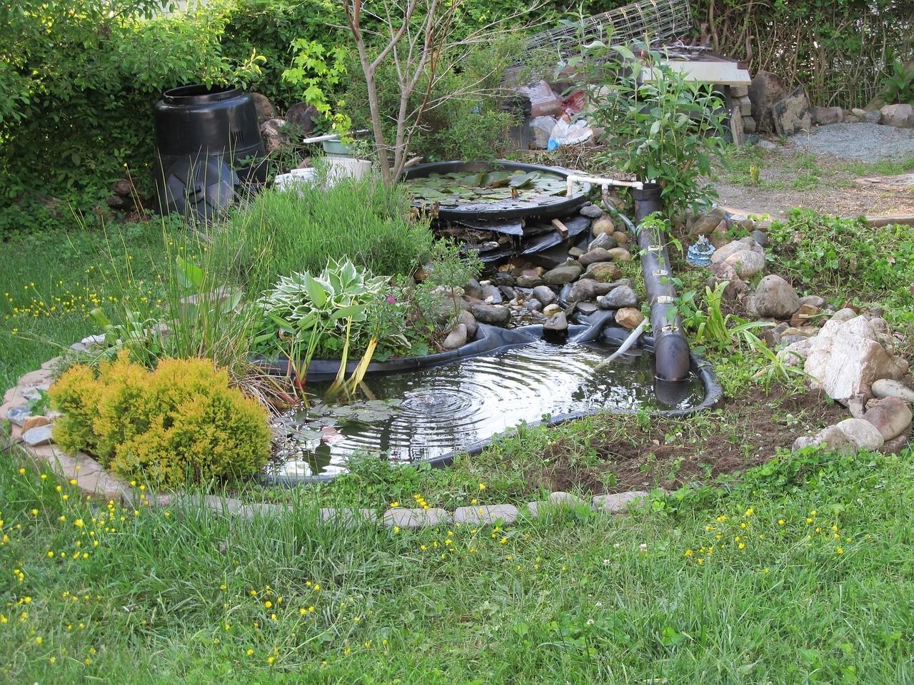 Effektive Gartengestaltung-Ideen gegen den Klimawandel