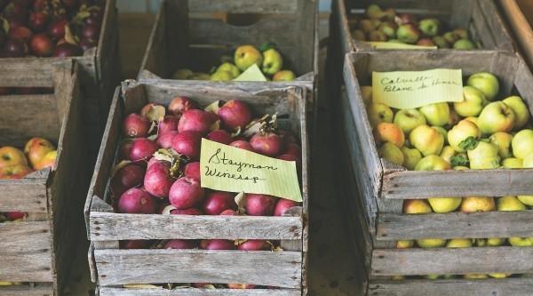 verschidene farben Apfel Äpfel gesund