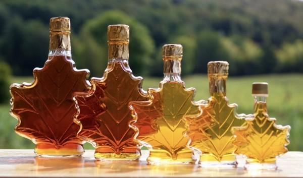 Ahornsirup Herstellung roter Ahornbaum Blätter Glasflaschen
