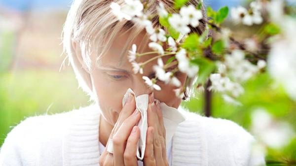 Apfelallergie Symptome Apfelsorten Pollenallergiker