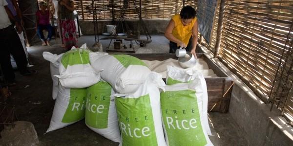 Freerice ist ein Quizspiel, das Welthunger lindern kann resultate reis ausgeliefert
