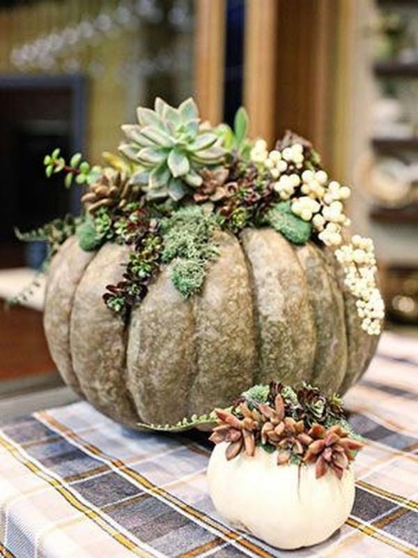 Kombination aus klein und Groß Halloween Kürbis