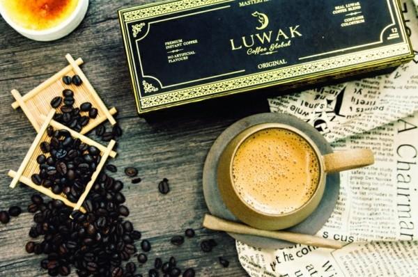 Kopi Luwak Kaffee Preis Katzenkaffee der teuerste Kaffee der Welt