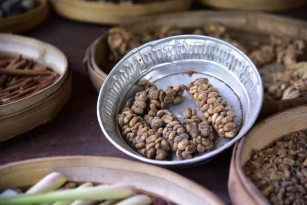 Kopi Luwak Kaffee Preis Katzenkaffee teuerster Kaffee Kackkaffee