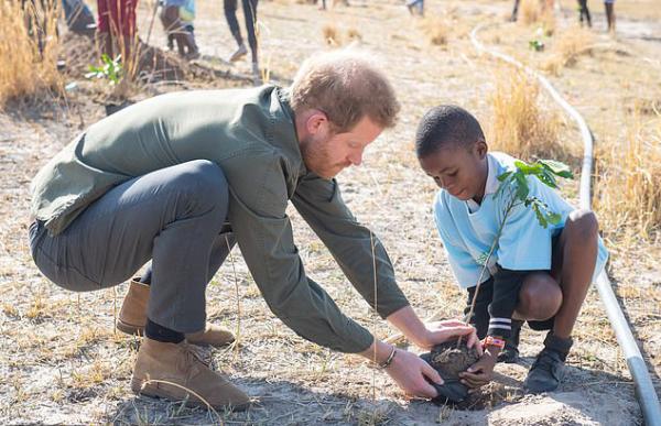 tolles Beispiel für soziale Projekte vo m Prinzen Harry