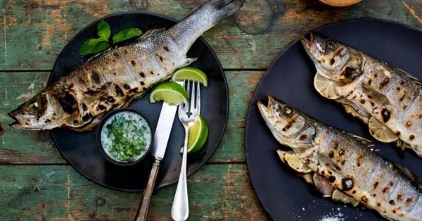 Forelle grillen Limetten Soße gesunde Ernährung Kaltwasserfisch