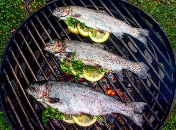 Forelle grillen Rezept gesunde Ernährung