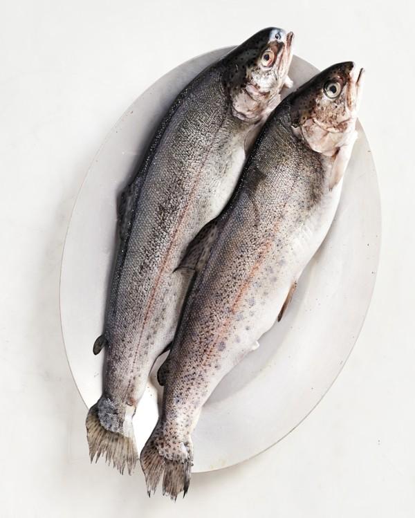 Forelle grillen gesunde Ernährung Kaltwasserfisch Forellen