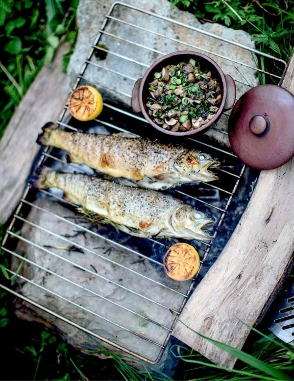 Forelle grillen mit Pilzen gesunde Ernährung Forelle Nährstoffe